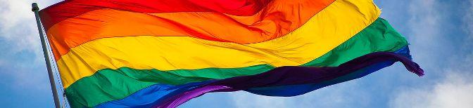 Regenboogvlag_banner